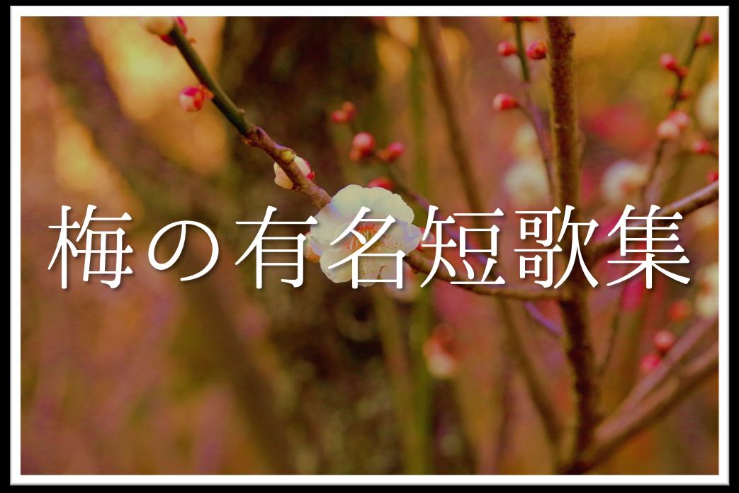 【梅の有名短歌(和歌)集 30選】現代・新古今和歌集・万葉集など!!おすすめ作品を紹介!