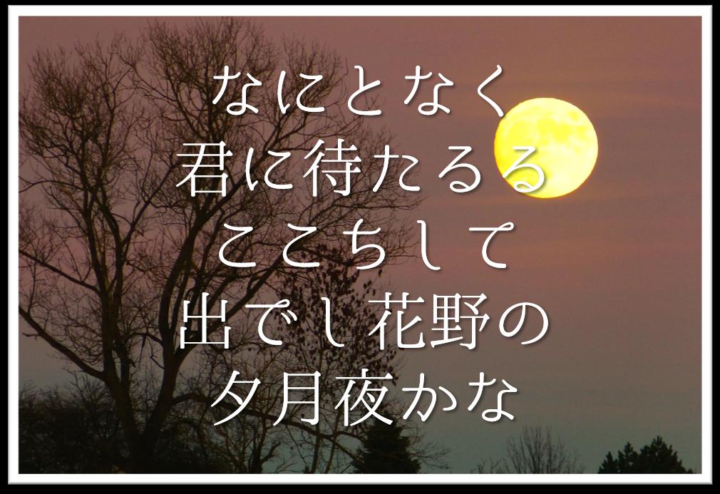 【なにとなく君に待たるるここちして出でし花野の夕月夜かな】徹底解説!!意味や表現技法・句切れなど