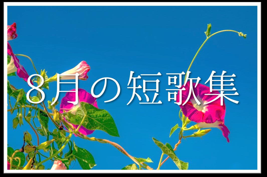 【8月の短歌(和歌)集 20選】おすすめ!!8月らしさを感じる有名作品を紹介!