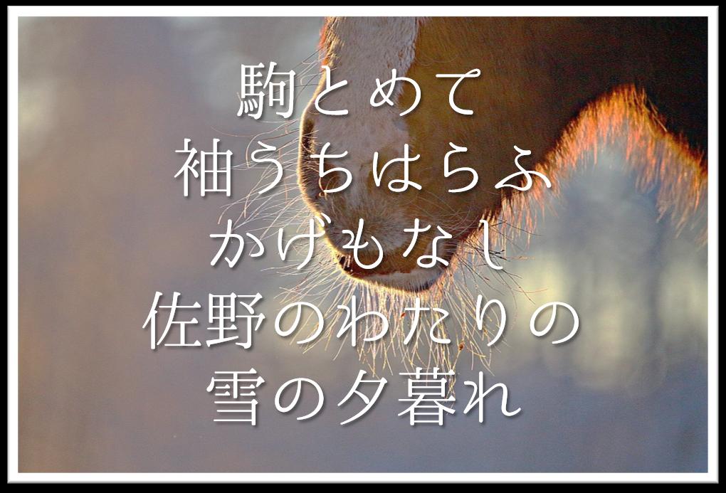 【駒とめて袖うちはらふかげもなし佐野のわたりの雪の夕暮れ】徹底解説!!意味や表現技法・句切れなど