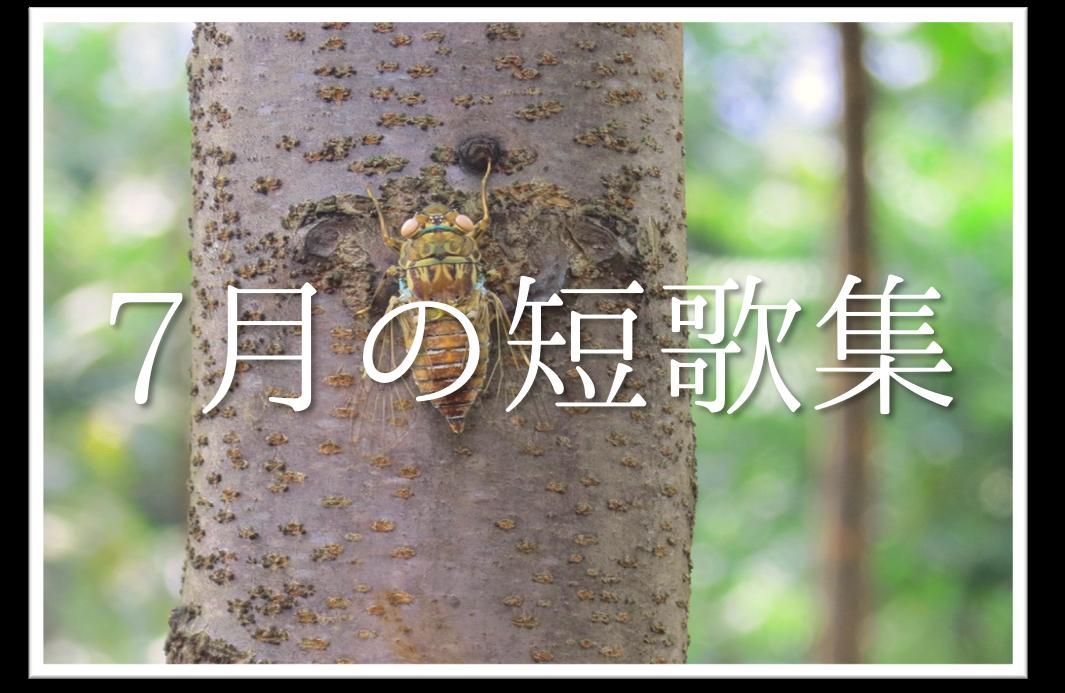 【7月の短歌(和歌)集 20選】おすすめ!!知っておきたい7月らしい有名作品を紹介!