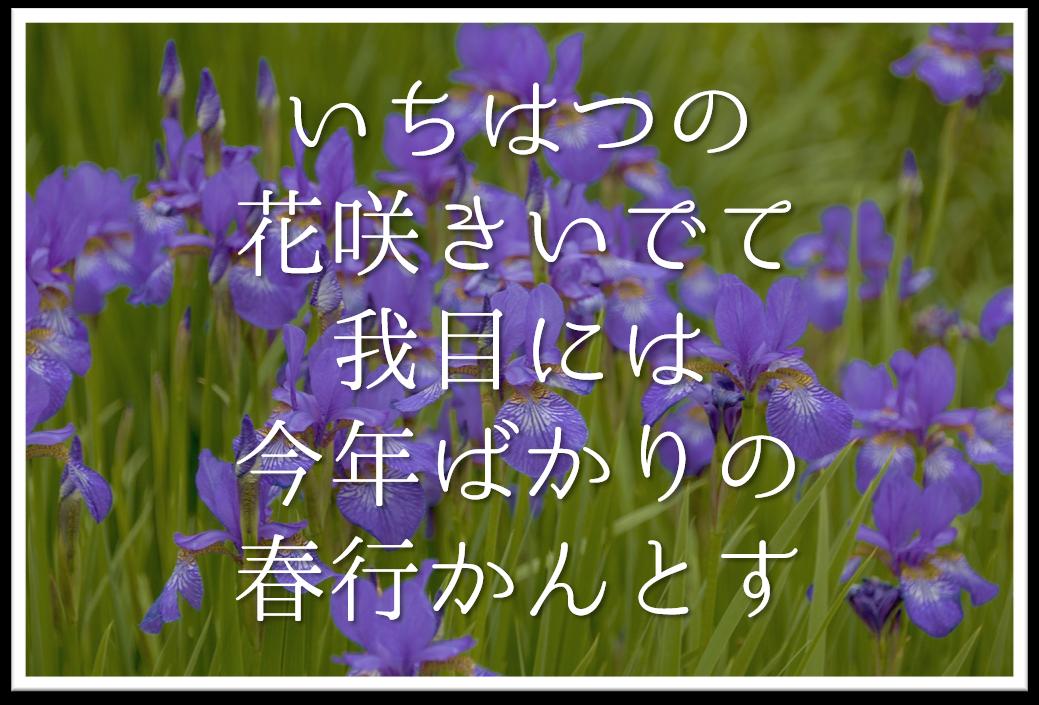 【いちはつの花咲きいでて我目には今年ばかりの春行かんとす】徹底解説!!意味や表現技法・句切れ・鑑賞文など