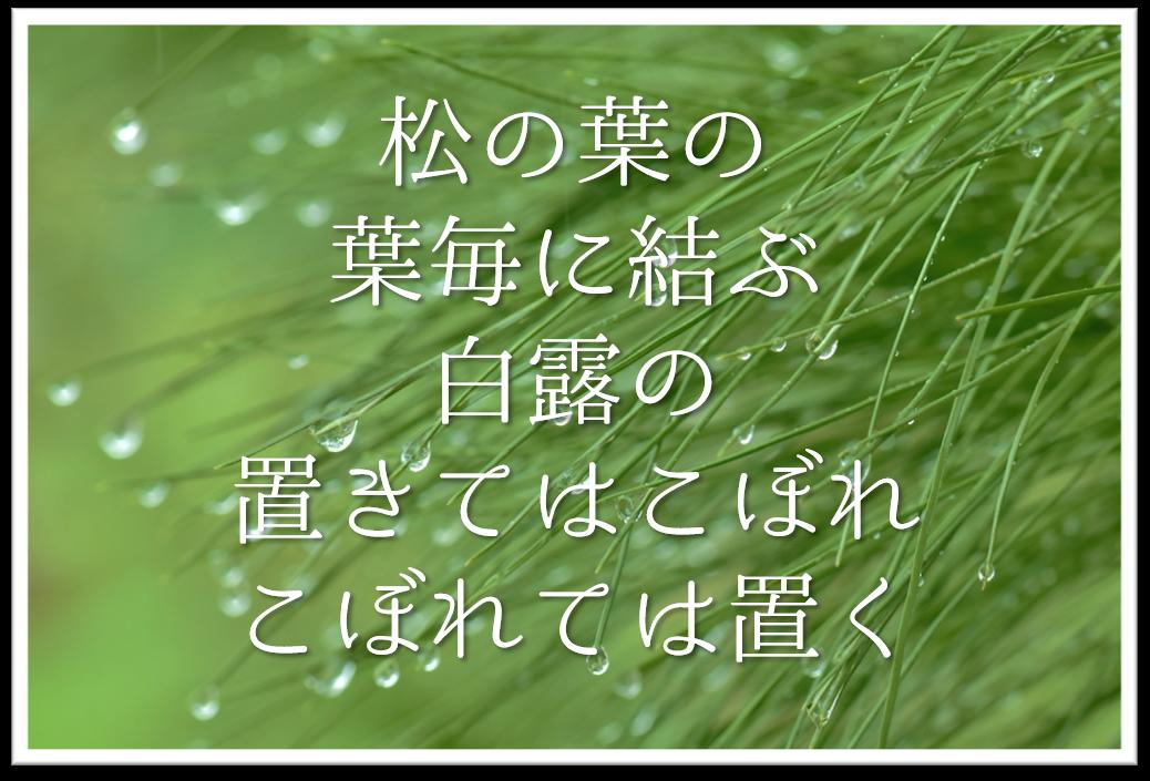 【松の葉の葉毎に結ぶ白露の置きてはこぼれこぼれては置く】徹底解説!!意味や表現技法・句切れ・鑑賞文など