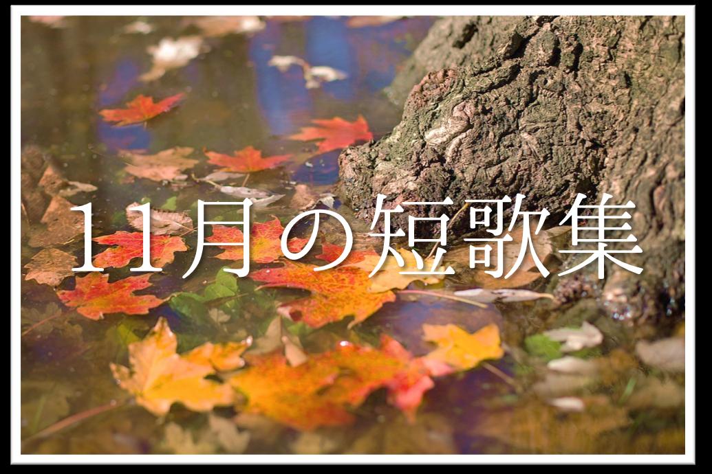 【11月の短歌(和歌)集 20選】おすすめ!!知っておきたい11月らしい有名作品を紹介!