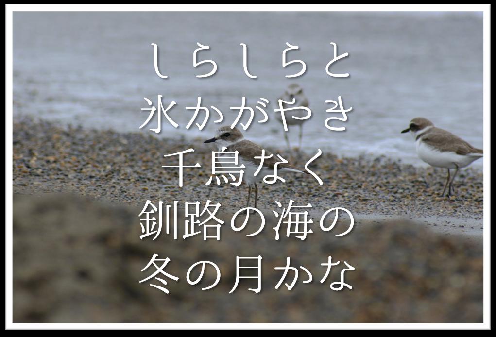 【しらしらと氷かがやき千鳥なく釧路の海の冬の月かな】徹底解説!!意味や表現技法・句切れ・鑑賞文など