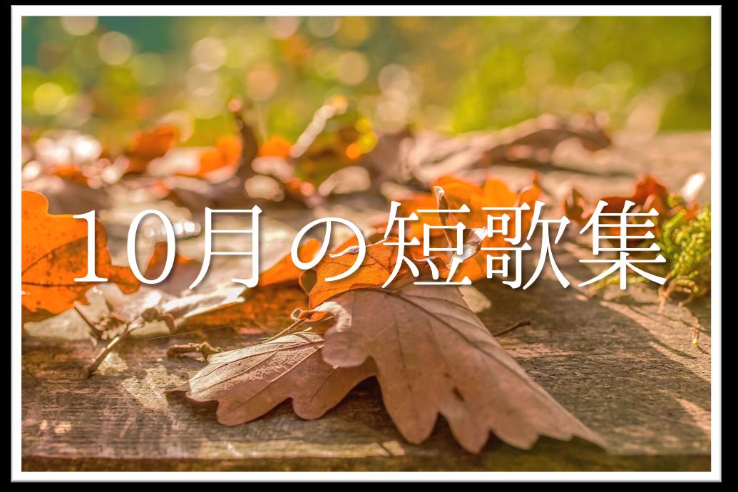 【10月の短歌(和歌)集 20選】秋を感じる!!知っておきたいおすすめ有名作品を紹介!