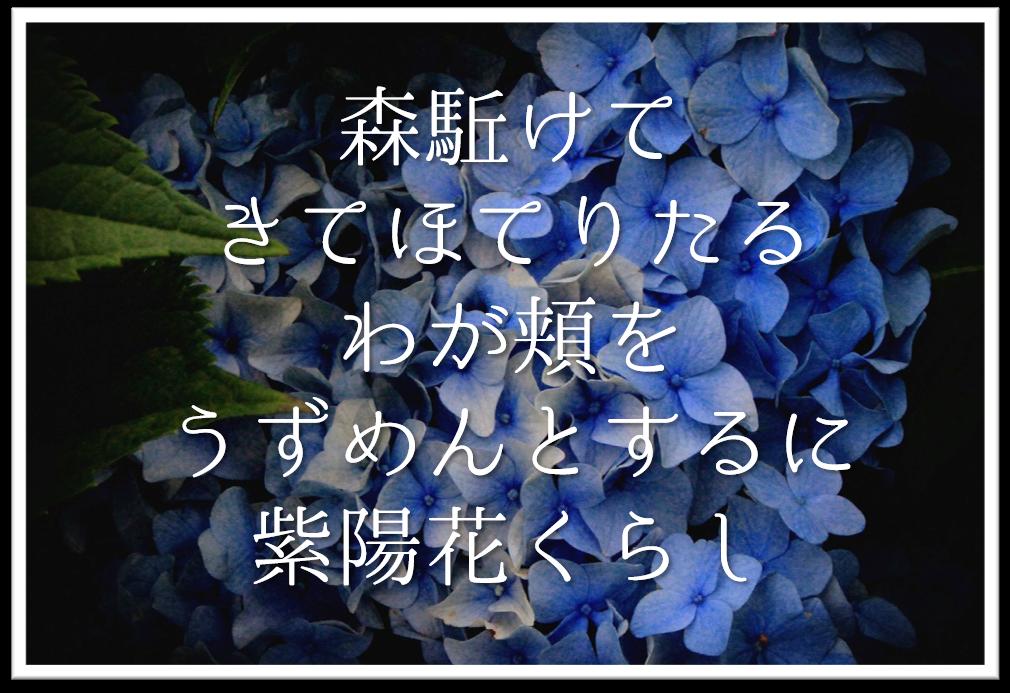 【森駈けてきてほてりたるわが頬をうずめんとするに紫陽花くらし】徹底解説!!意味や表現技法・句切れなど