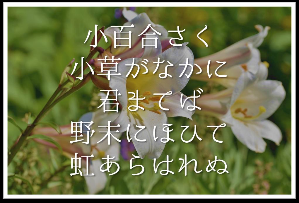 【小百合さく小草がなかに君まてば野末にほひて虹あらはれぬ】徹底解説!!意味や表現技法・句切れなど