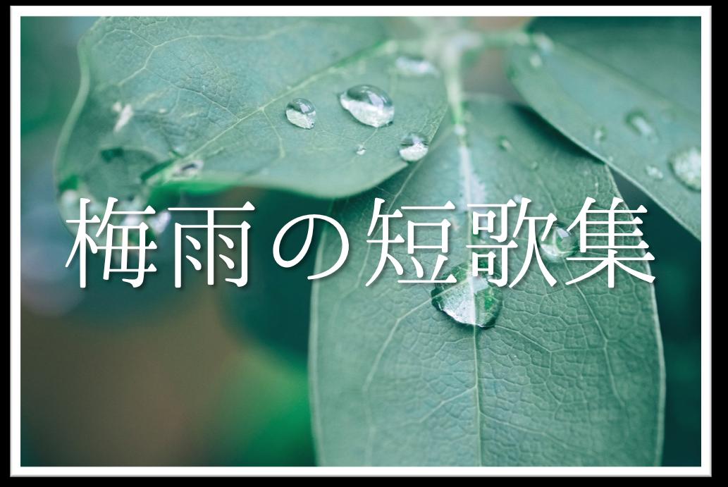 【梅雨の短歌20選】おすすめ!!梅雨を感じる有名短歌&素人作品集を紹介!