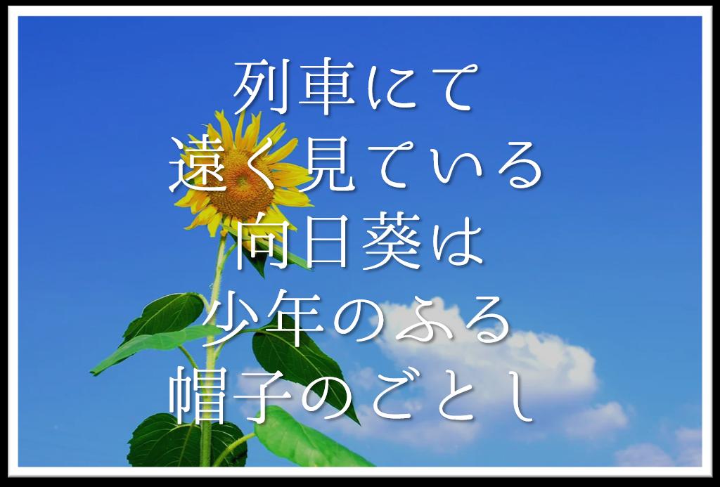 【列車にて遠く見ている向日葵は少年のふる帽子のごとし】徹底解説!!意味や表現技法・句切れなど